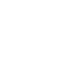 Leadership_Icon